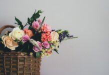 Bukiet kwiatów to jeden z łatwiejszych prezentów, warto jednak wybrać kwiaty cięte bezpieczne dla zwierząt, które nie będą stanowić zagrozenia dla naszych pupili. Na zdjęciu bukiet kwiatów w koszyku składający się z róż.