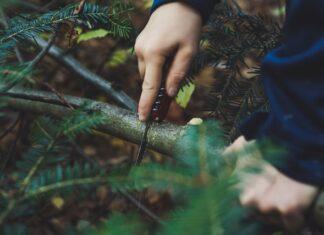 Multitoole do 1000 zł, często nadają się już jako sprzęt survivalowy, ponieważ posiadają piłkę do drewna. Na zdjęciu męzyczna piłuje gałąź za pomocą multitoola.