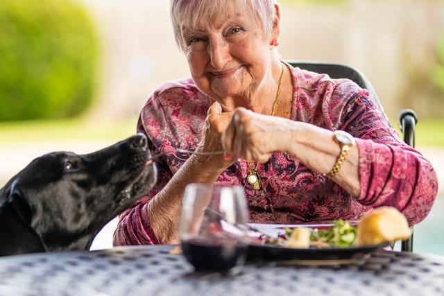 Kontakt ze zwierzętami jest niezwykle ważny dla starszych ludzi.